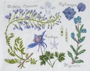 botanique dans botanique 14561H-300x237